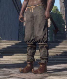 Black Guard's Hose