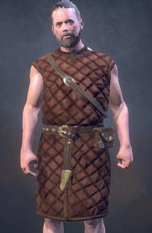 Shieldman's Gambeson